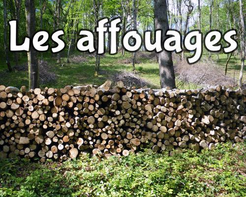 Image de couverture - INFO  AFFOUAGE