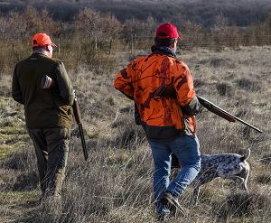 Image de couverture - Ouverture générale de la chasse dimanche 12 septembre 2021.