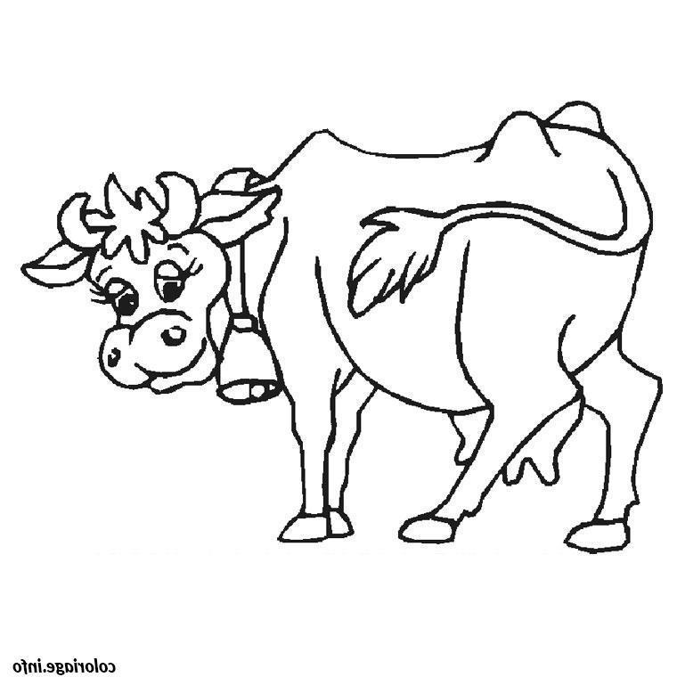 Image de couverture - Comice agricole 2021
